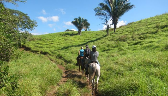 horseback riding tour santa teresa costa rica