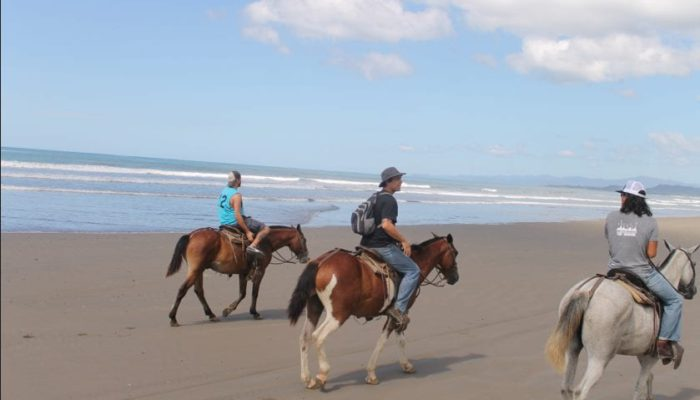 Santa Teresa beach Horse Back riding