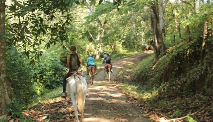 beach path on horse back - Costa Rica